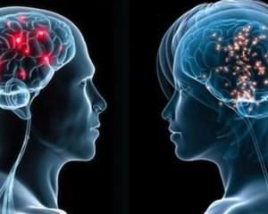 neuroni la barbati si femei