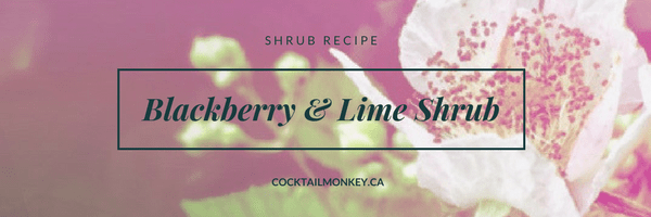 How to: Blackberry Shrub Recipe