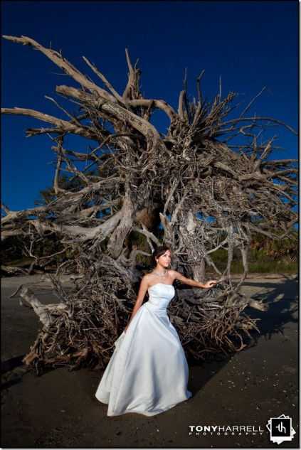 jekyll island wedding driftwood beach