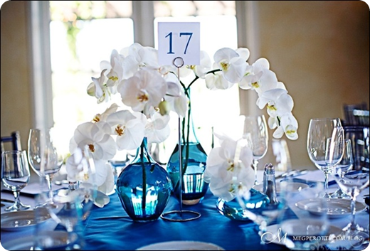 white phalaenopsis rochid in blue vases with blue linens