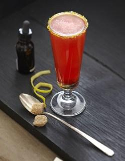Squires-Shrub-Cocktail