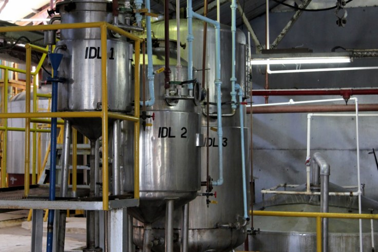 Yeast propagation tanks at Clarendon distillery, Jamaica