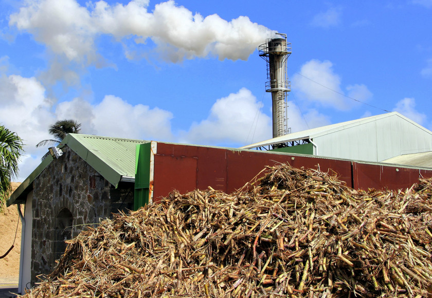 Distillerie du Simon, Martinique