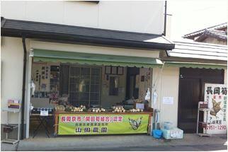 山田農園のたけのこ販売場所