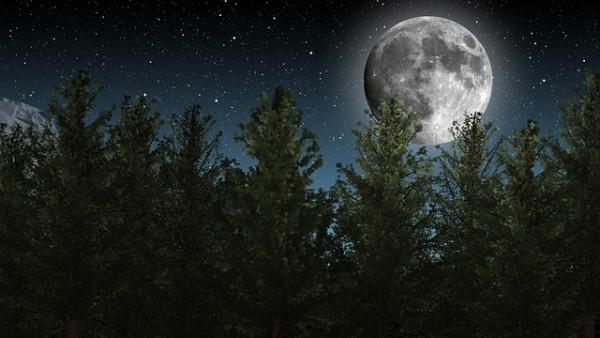 moon-1464926_640