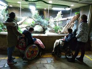 Thursday 13th February 2020, Personal Progress 2 – Zoo Trip.
