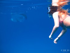 A Dhuni Kolhu guest experiencing an intimate encounter with a reef Manta Ray