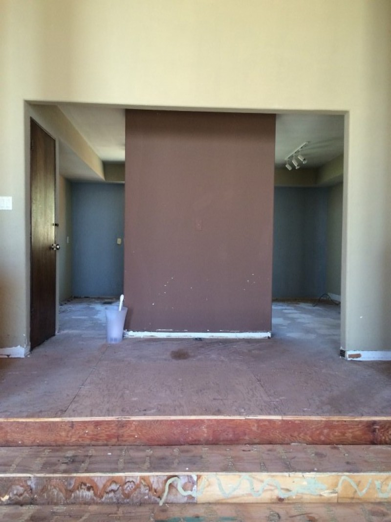 Den Before Home Renovation