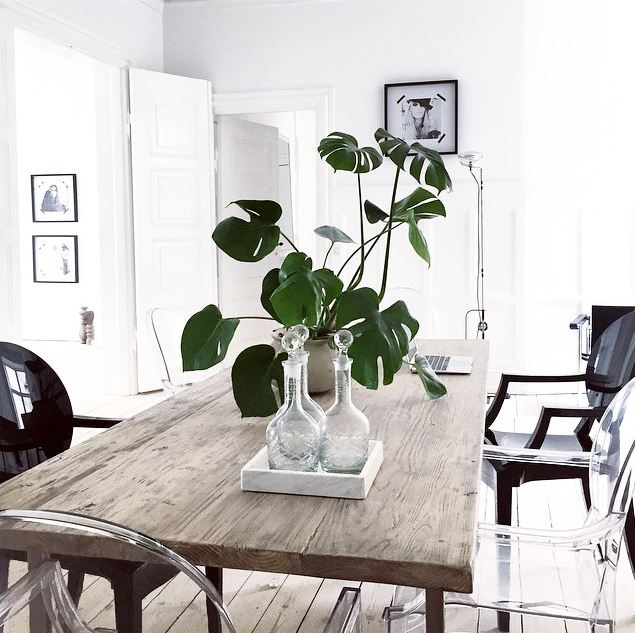 dining room cococozy