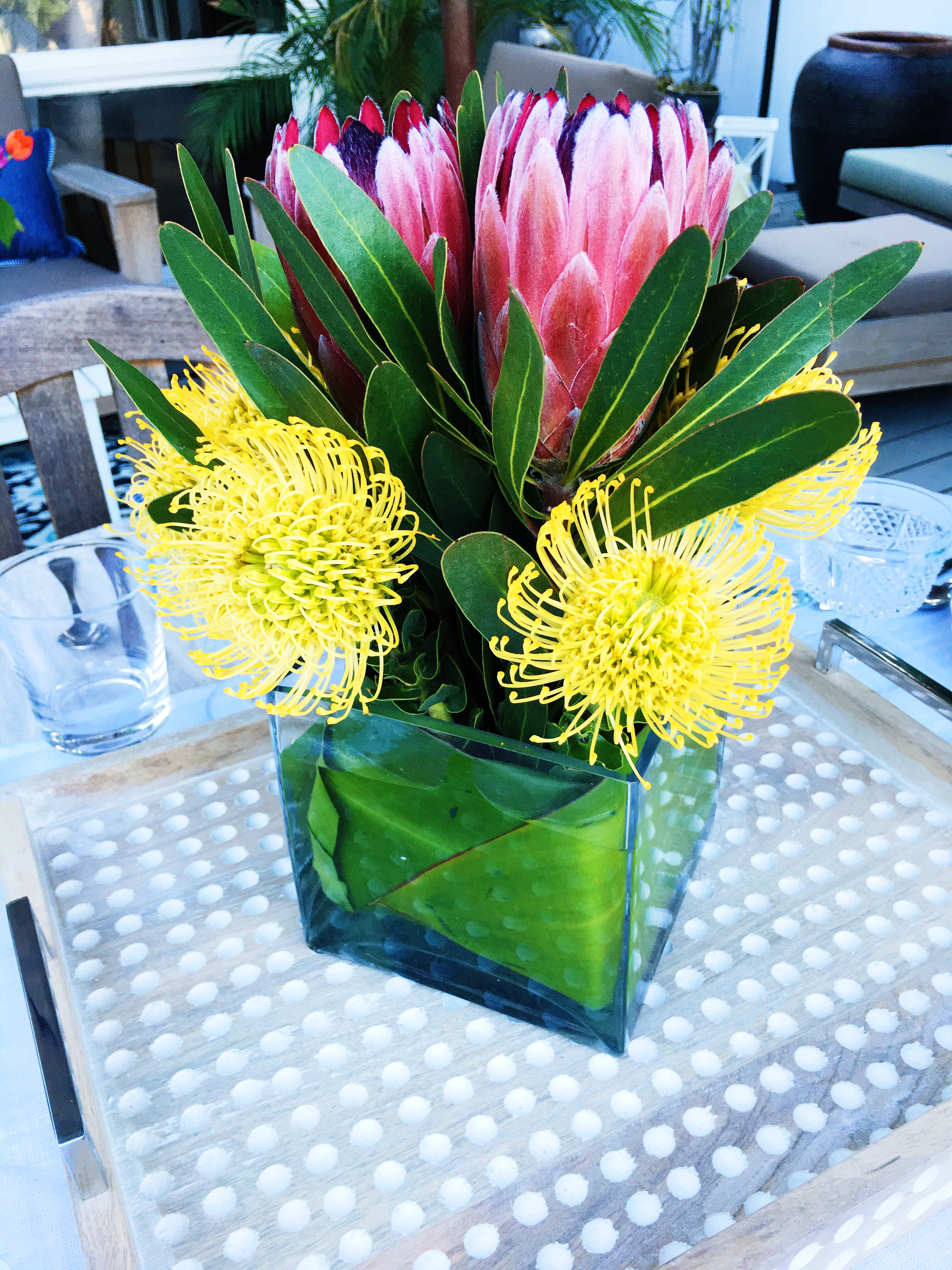 Spring Outdoor Entertaining Flowers Pink Proteas YellowPincushions