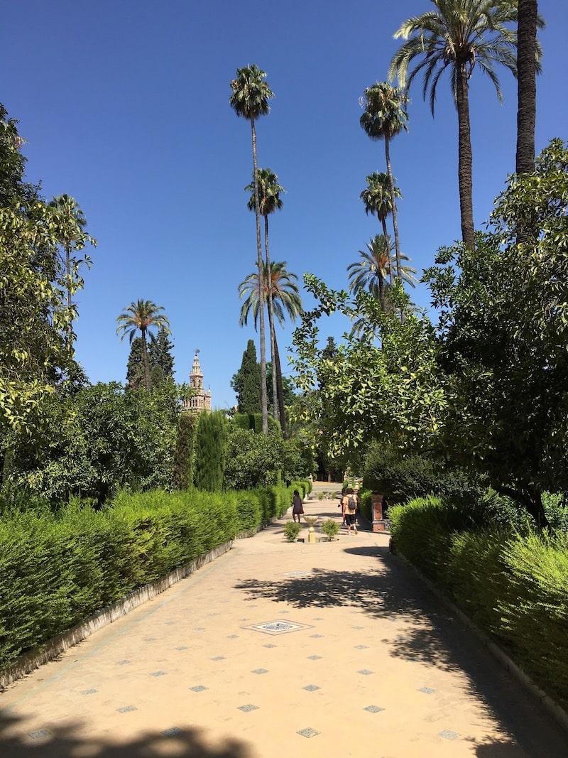 alcazar de sevilla spanish gardens