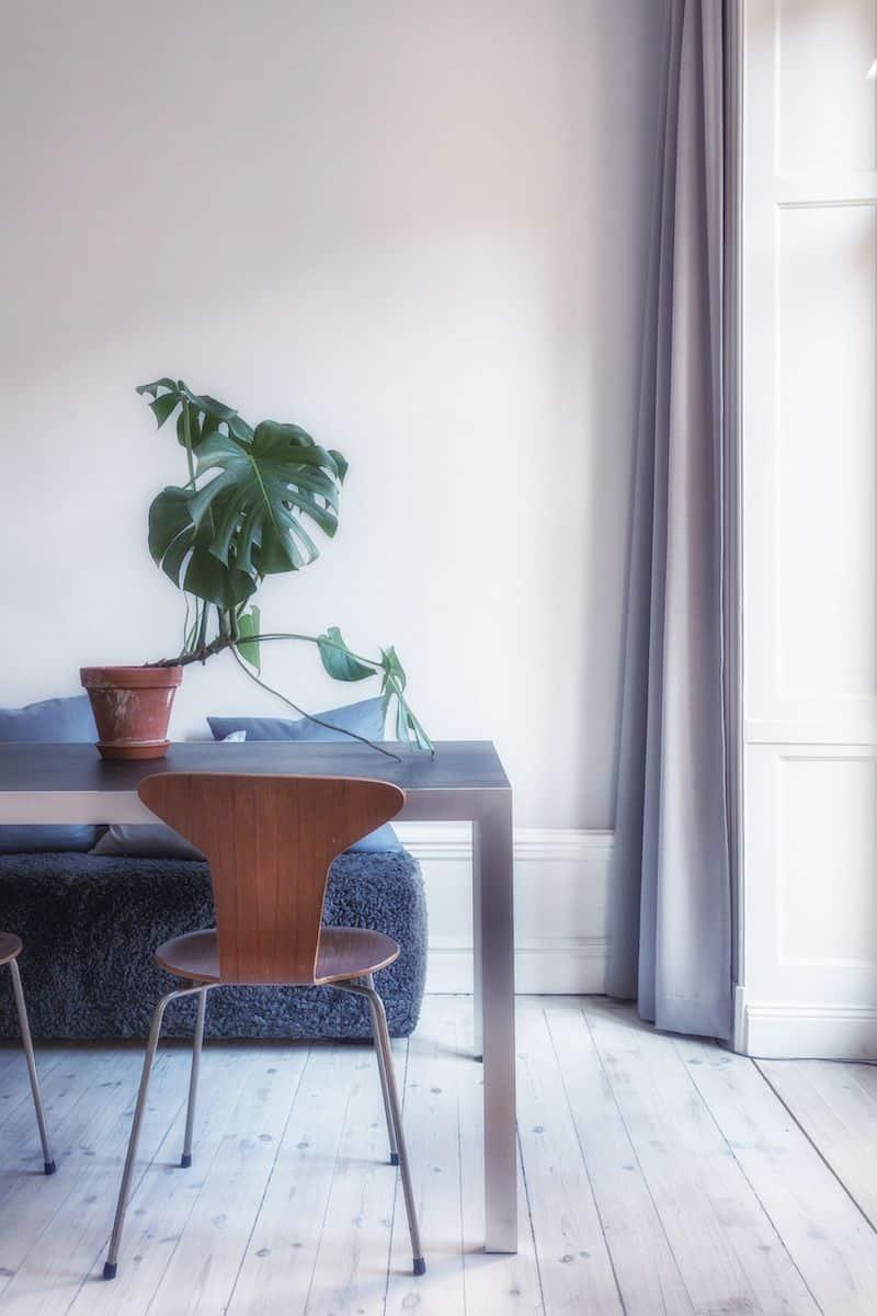 sweden home dining room green plant
