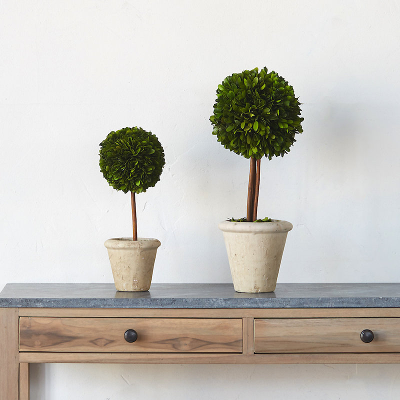 boxwood-sphere-topiary-coffee-table-styling