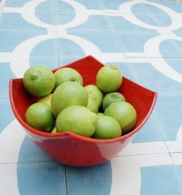 """Blue and white cement Moroccan tiles by Popham Designs in """"Wink"""""""