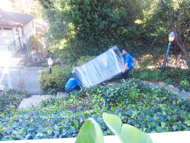 two men moving a couch, wrapped in plastic, down a flight of flagstone stairs surrounded by ivy