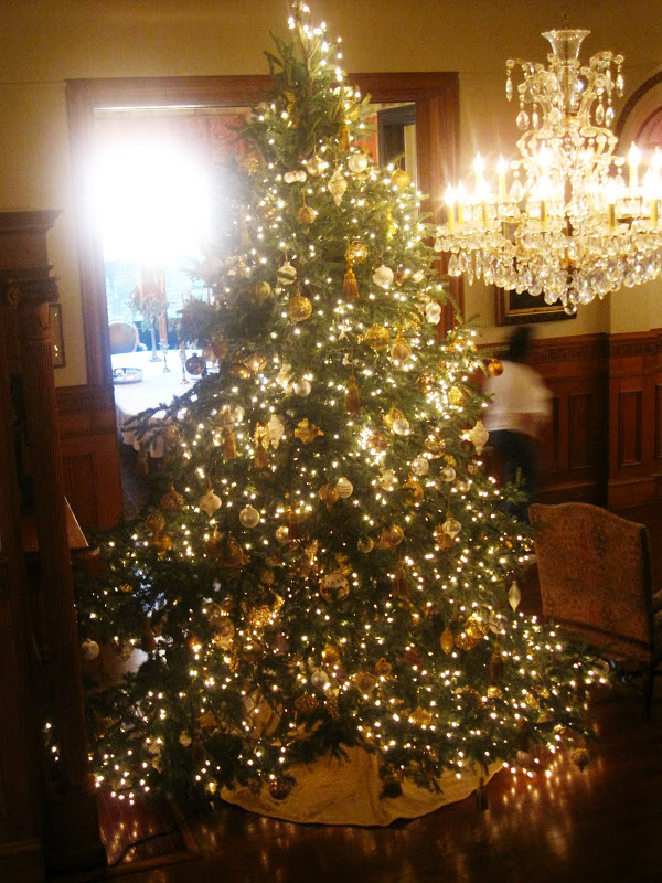 Large Christmas tree in a New Orleans mansion