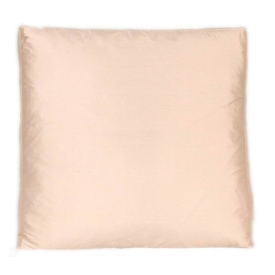 Silk down pillow from Urban Home