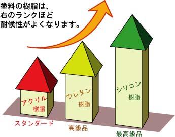 3_image4