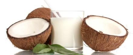「coconut milk」の画像検索結果