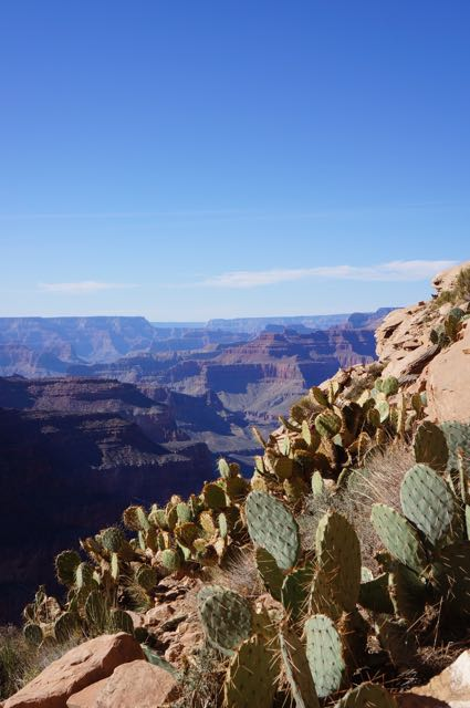 Grand Canyon, Arizona, USA. Photo: Eeva Routio.