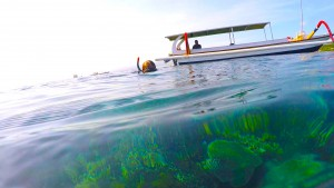 Nusa Lembongan Snorkeling. Photo: Eeva Routio.