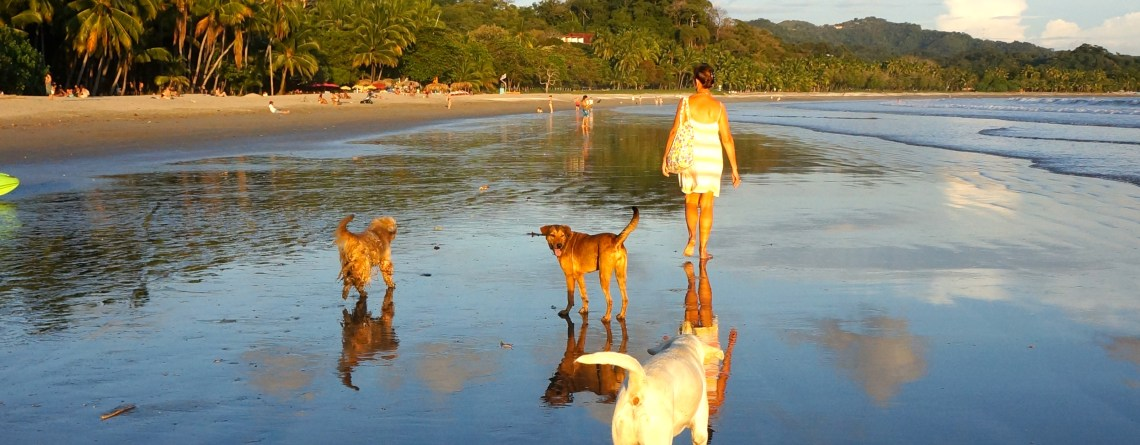 What Makes Samara Beach, Costa Rica So Special?