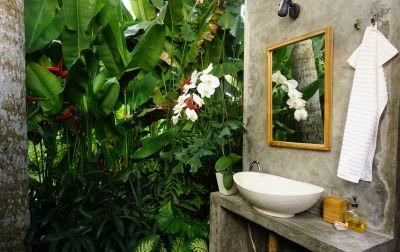 Treehose bathroom with green wall