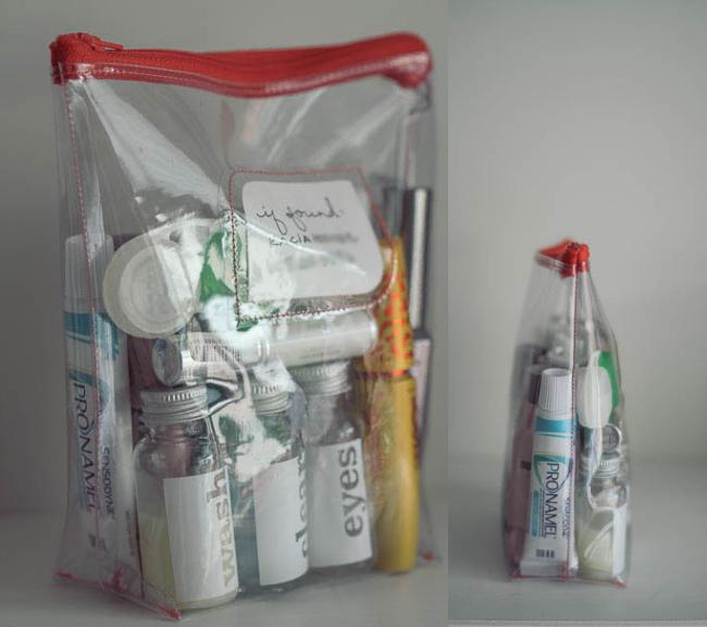 reusable carryon liquid bag