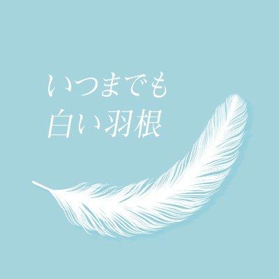 新川優愛いつまでも白い羽根の髪型を解説!2018最新のオーダー&セット方法!