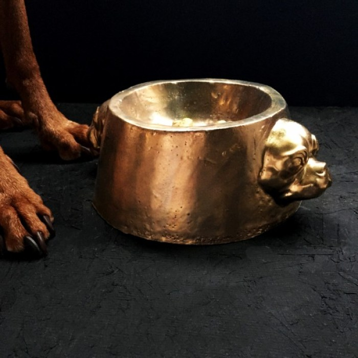 January sales Gold Dog Bowl