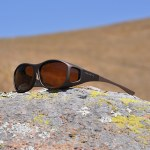Best fitover sunglasses by reviews