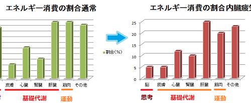 エネルギー消費の割合変化を習う