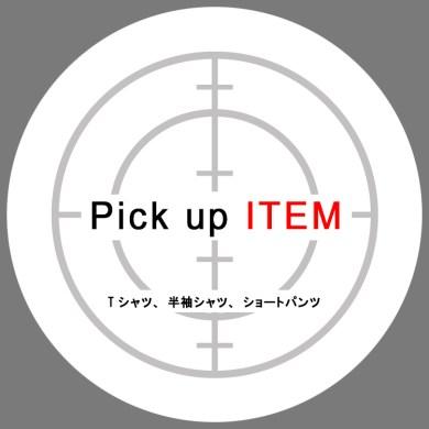 information.   Pick up ITEM. -Tシャツ、半袖シャツ、ショートパンツ-