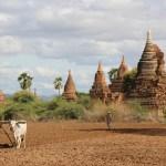 観光地化が貧しい村にもたらすもの~ミャンマー、パガン遺跡にて