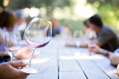 フランスでワイン畑に行く