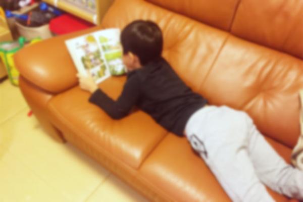 小学一年生男児(長男)が最近すきな本