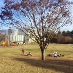 広い芝生で目一杯ボール遊びしたい時は和光樹林公園に行こう!