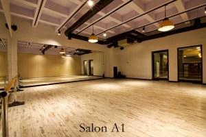 Latino Dans Stüdyosu Ümitköy Şubesi Salon 1.2