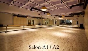 Latino Dans Stüdyosu Ümitköy Şubesi Salon 1+2.1
