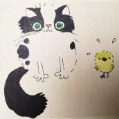 Civcivi kediye yedirtme!
