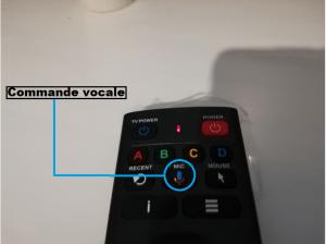 DUNE 4K II PRO commande vocale
