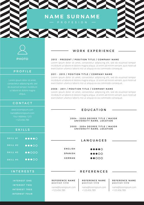 Professional Resume Examples Monster