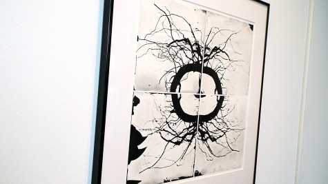 """The piece """"Roots #15"""" by Patsy R. Davis at the Wings Student Art Gallery in the College of DuPage on Jan. 28."""