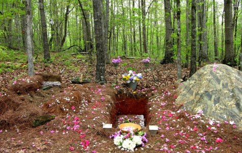 "Are we burying our dead wrong? (Exploring ""green"" burials as a sustainable alternative)"