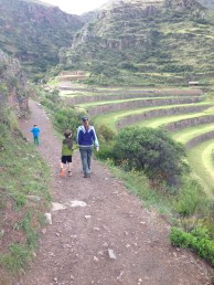 Some terraces above pisac