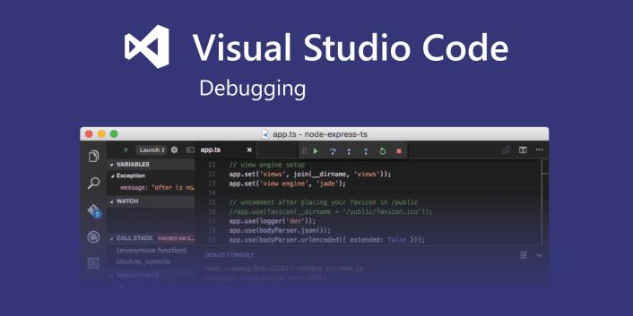 why use visual studio code