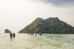 Chicken Island Path