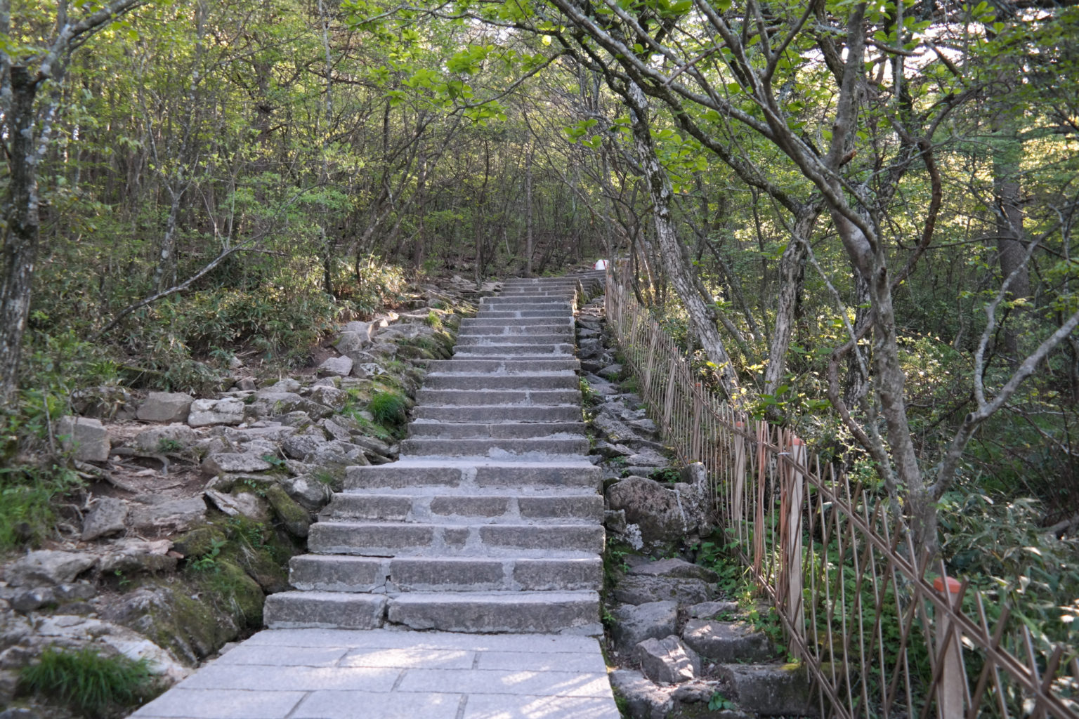 Szlak w Chińskich Górach
