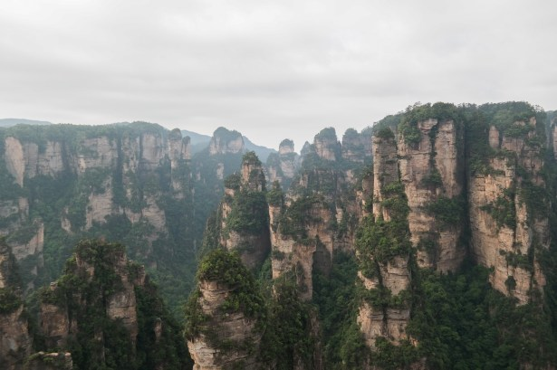 Yangjiajie Scenic Area