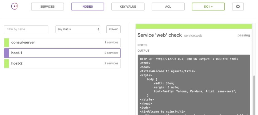 Web check output